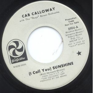 45T I Call You Sunshine PIP.jpg